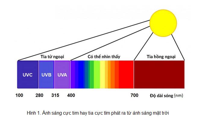 Ứng dụng của bước sóng ánh sáng
